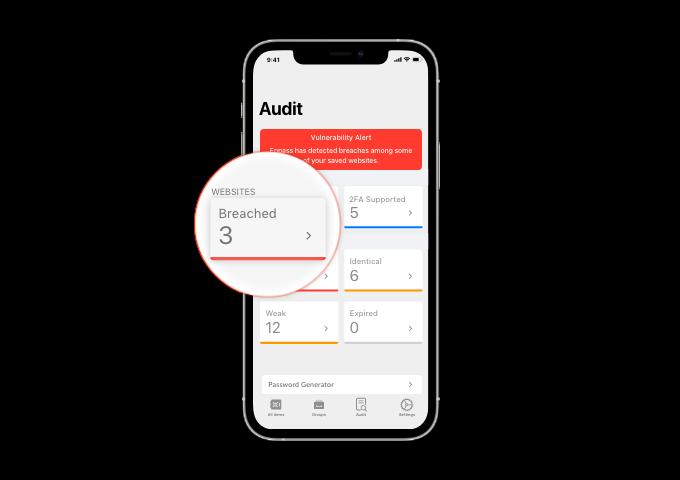 Enpass Audit dashboard